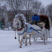 новогодние праздники. :: леонид мамошин