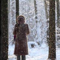 Мороз и солнце в Битцевском лесу :: Валерий Князькин