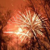 Салют в честь Нового года... :: Raisa Ivanova