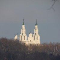 Софийский собор :: Наталья Полочанка