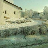 В зимнем кружеве :: galina bronnikova