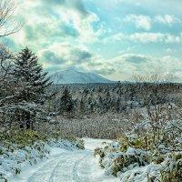 Природа острова Кунашир :: Елена Семёнова