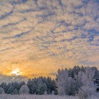 Зимний закат :: юрий