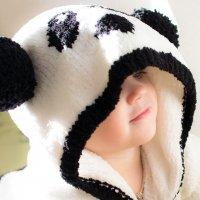 Таинственная панда :: Мария Серогодская