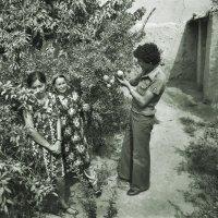 Семья из Самарканда :: Валерий Талашов