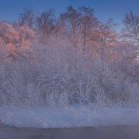 зимняя сказка 05 :: Denis Zakalyapin