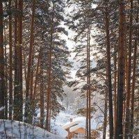 за лесом на опушке :: евгения