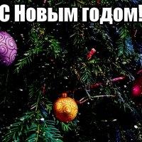 Радостного  Старого Нового года! :: Nina Yudicheva