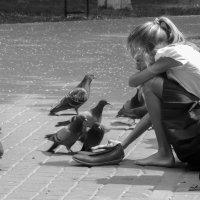Кормление голубей :: Евгений Лебедь