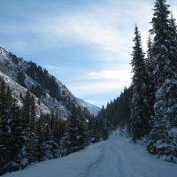 дорога в снежную сказку :: Валерия Кучина