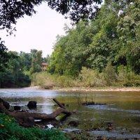 Природа Индии :: ирина