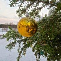 прощайте новогодние праздники :: Елена