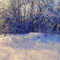 Поэзия зимы :: Евгений Юрков