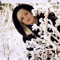 зима :: Наталья Малкина