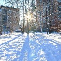 Солнечный дворик. :: Виктор Евстратов