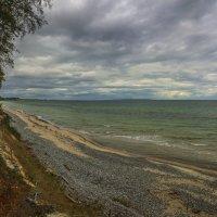 Море и лес :: Марат Макс