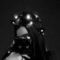 Мои котята :: Валерия