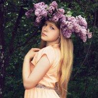Сиреневое лето :: Мария Макарова