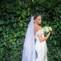 Невеста :: Tanya Ash