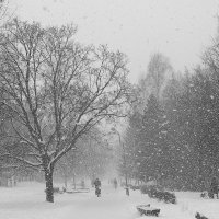 Дороги зимы :: Андрей Михайлин