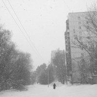 Белая пелена :: Андрей Михайлин