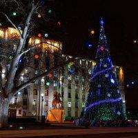 Новогодний Краснодар :: Андрей Майоров