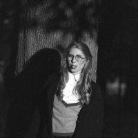 crime in Harvard :: Каролина Король