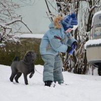 Маленькие друзья :: Валерий Лазарев