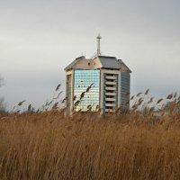 Здание Украинского Дунайского Пароходства,Измаил Украина :: Жанна Романова