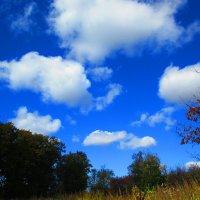Летний пейзаж ! :: ❅ Татьяна ❅