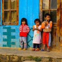 Вьетнам :: Александра Голоскова