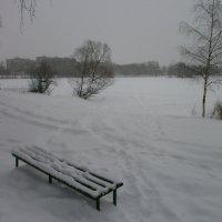 Середина зимы.... :: Алёна Савина