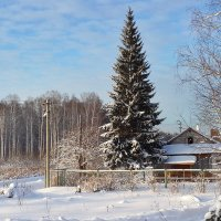 Зима :: Maksim Dubinsky