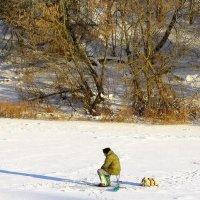 Зимняя рыбалка на Оке. :: Борис Митрохин