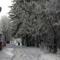 16.01.2016 Зимушка :: Юрий Рачек