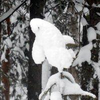 То-ли птица, то-ли самолетик :: Наталья Пендюк Пендюк