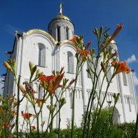 Лилии Успенского собора :: Peripatetik