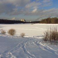 Февраль - это почти март :: Андрей Лукьянов