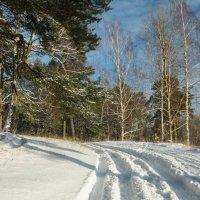 Зимняя дорога :: Олег Козлов