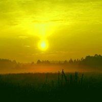 Восход на Проснице :: Наталья Зимирева