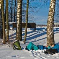 Отдых в зимний,солнечный день. :: Виктор Евстратов