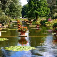 Отдыхающие в парке цветов :: Nina Yudicheva