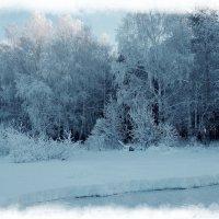 Морозно в Сибири :: Владимир Звягин