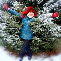 зима :: неля  тулузова