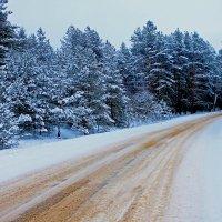 Зима :: Александр Лозко