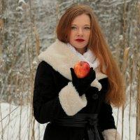 Зимний день :: VALIJA