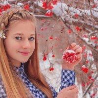 Зимняя рябина :: Ирина Горшенина