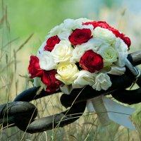 букет невесты :: Максим Ванеев