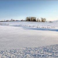 Зимняя деревенская... :: Александр Никитинский