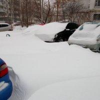 Однажды лютой зимой :: Александр Скамо